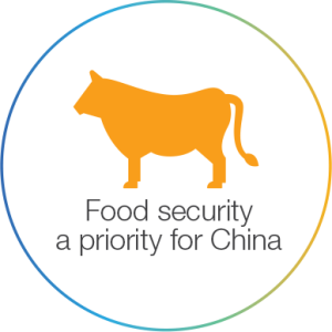 Food security a priority for China